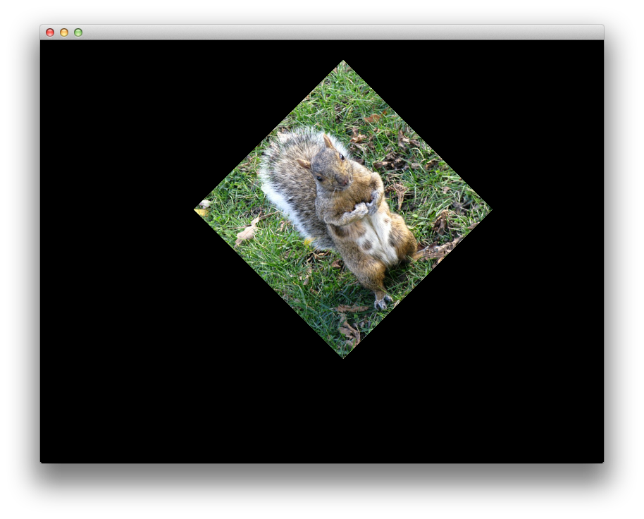Squirell image combined translation and rotation transforms